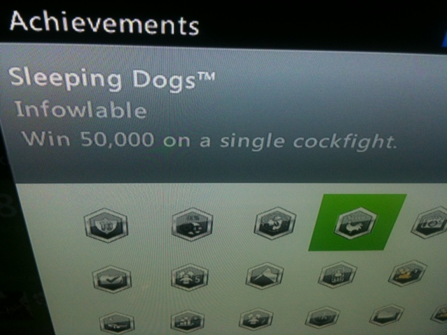 Sleeping Dogs Tourist Achievement